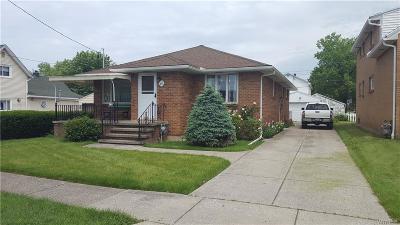 Cheektowaga Single Family Home For Sale: 48 Blick Street