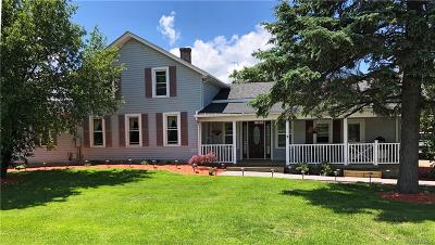Genesee County Single Family Home For Sale: 10188 Pavilion Center Road