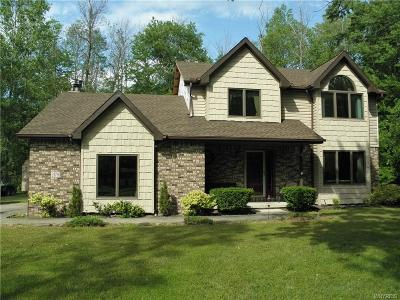 Erie County Single Family Home For Sale: 2178 Derby Road