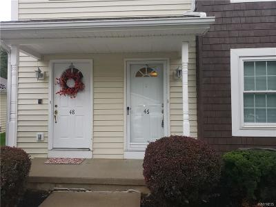 Erie County Single Family Home For Sale: 46 Olde Stone Lane