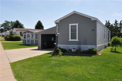 Akron Single Family Home For Sale: 63 Wesley Drive