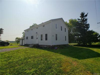 Hamlin Single Family Home For Sale: 1640 Monroe Orleans County Line Road