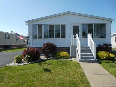 Clarence Single Family Home For Sale: 9904 Newmarket Avenue