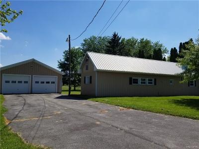 Genesee County Single Family Home For Sale: 6570 Route 262