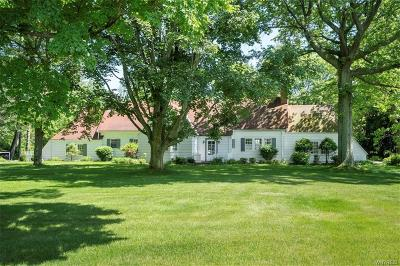 Aurora Single Family Home For Sale: 404 Buffalo Road