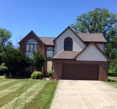 Orchard Park Single Family Home For Sale: 3180 Angle Road