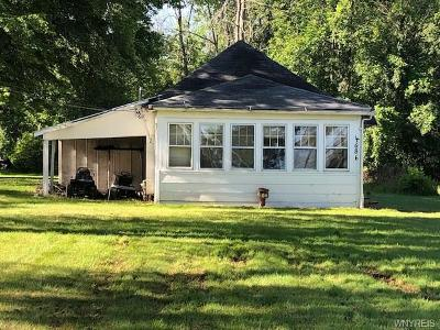 Grand Island Single Family Home For Sale: 4686 East River Road
