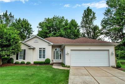 Amherst Single Family Home For Sale: 67 Ashbury Court