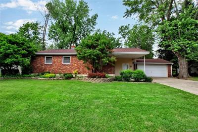 Amherst Single Family Home For Sale: 1970 Maple Road