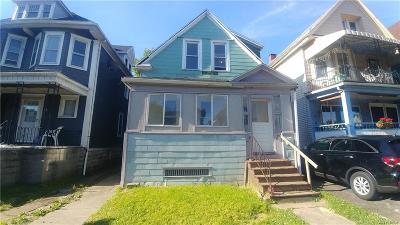 Buffalo Single Family Home For Sale: 597 E Ferry Street