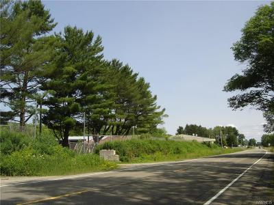 Allegany NY Commercial For Sale: $129,000