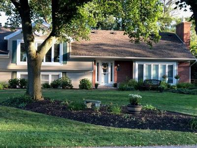 Amherst Single Family Home For Sale: 110 Dawnbrook