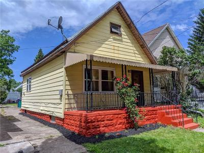 Buffalo Single Family Home For Sale: 38 Goethe Street