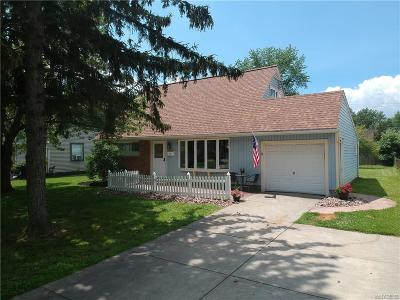 Grand Island Single Family Home For Sale: 32 Marilyn Drive