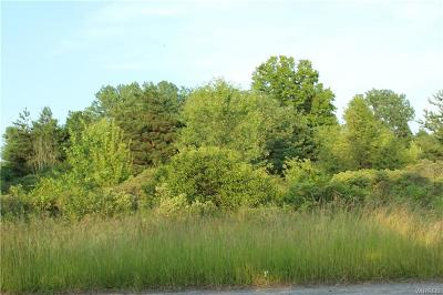 Lewiston Residential Lots & Land For Sale: 4579 Porter Center Road