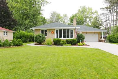 Amherst Single Family Home For Sale: 344 N French Road