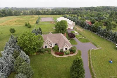 Clarence Single Family Home For Sale: 10834 Keller Road