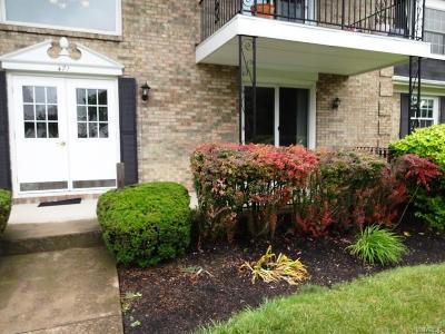 Amherst Condo/Townhouse For Sale: 471 Burroughs Drive #D