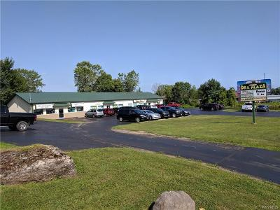 West Seneca NY Commercial For Sale: $885,000