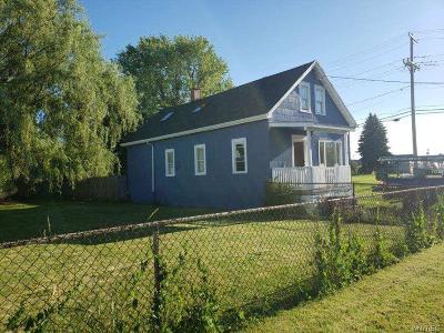 Buffalo Single Family Home For Sale: 317 Dingens Street
