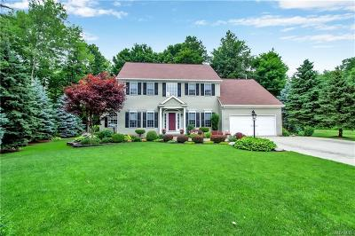 Orchard Park Single Family Home For Sale: 290 Lawrence Woods