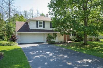Orchard Park Single Family Home For Sale: 6097 Berkley Drive