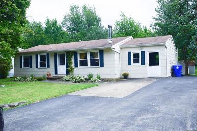 Hamburg Single Family Home For Sale: 4249 Beetow Drive