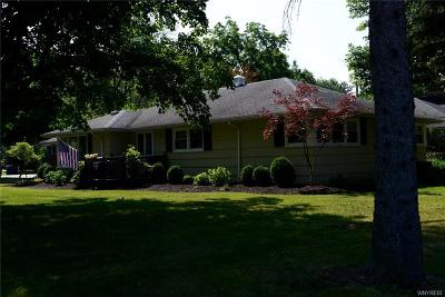 Amherst Single Family Home For Sale: 440 Park Club Lane