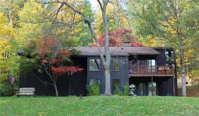 East Aurora Single Family Home For Sale: 262 Maple Road