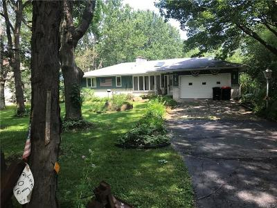 Elma Single Family Home For Sale: 456 Hall Road