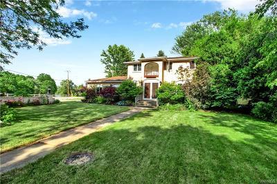 Amherst Single Family Home For Sale: 540 Vine Lane