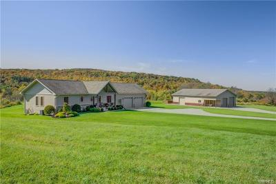 Cattaraugus County Single Family Home For Sale: 5049 Riceville Road