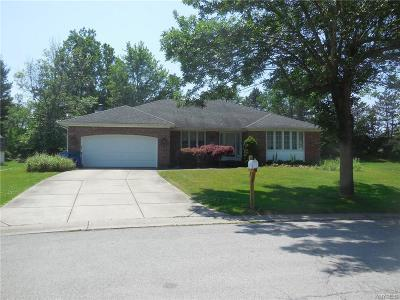 Amherst Single Family Home For Sale: 59 Moorfields Ct.