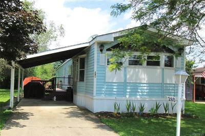 Arcade Single Family Home For Sale: 280 Skyview
