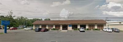 Commercial For Sale: 7500 Porter Road