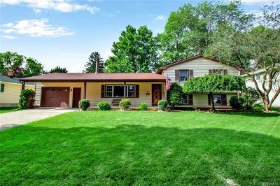 Lockport-City Single Family Home For Sale: 47 Treehaven Drive