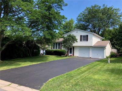 Single Family Home For Sale: 356 Village Walk Circle