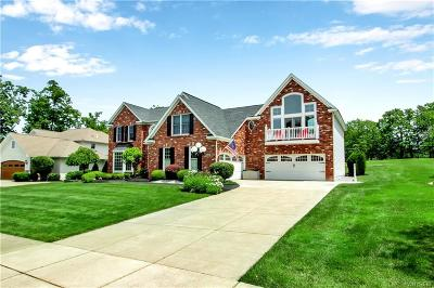 Hamburg Single Family Home For Sale: 5358 Briercliff Drive