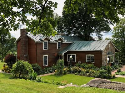 Ellicottville Single Family Home For Sale: 8592 Kruse Road