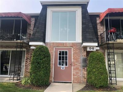 Amherst Condo/Townhouse For Sale: 12b Foxberry Drive
