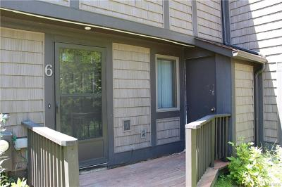 Ellicottville Condo/Townhouse For Sale: 6 Centerline Rd-The Woods