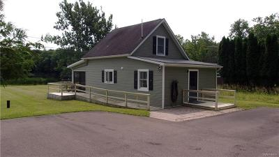 Allegany County, Cattaraugus County Single Family Home For Sale: 5120 Amity Lake Road #7A