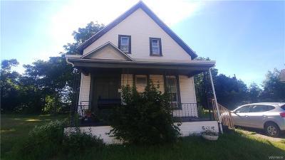 Buffalo Single Family Home For Sale: 127 Chester Street