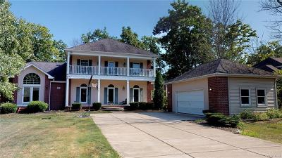 Grand Island Single Family Home For Sale: 207 Forest Creek Lane