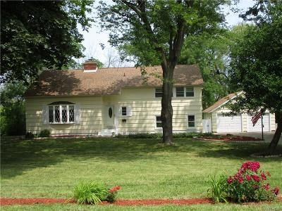 Lewiston NY Single Family Home For Sale: $209,900