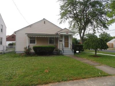 Niagara Falls Single Family Home For Sale: 2498 Independence Avenue