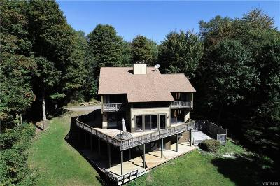 Ellicottville Single Family Home For Sale: 6925 Ridge Road