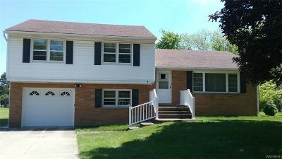 Lewiston NY Single Family Home For Sale: $214,900