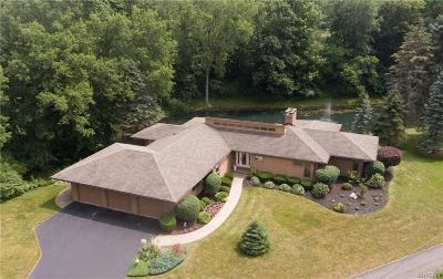 Erie County Single Family Home For Sale: 3547 Bullis Road