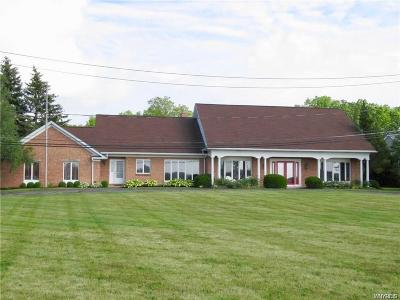 Grand Island Single Family Home For Sale: 2865 West River Road